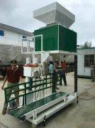 供应单秤自动称重大米颗粒包装秤10-60公斤